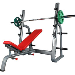 BFT3030D Adjustable Flat With Incline Bench Combination Fitness Equipment