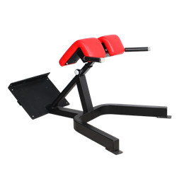 BFT3039B Roman Chair Manufacture Wholesale New Style Gym Equipment