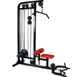 BFT3069B Dual Pulldown Row Machine For Sale