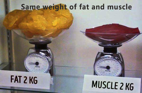Body fat percentage and fitness